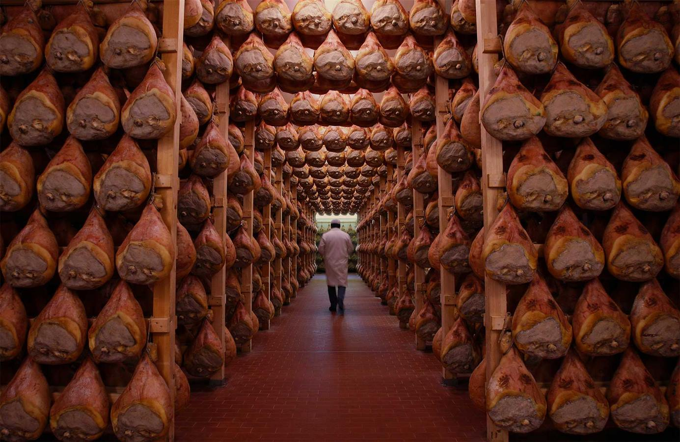 Full Immersion Gourmet tour from Bologna 1